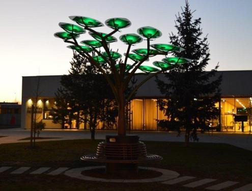 Solarno stablo