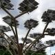 """Solvis-Napredujemo u """"sadnji"""" stabala"""