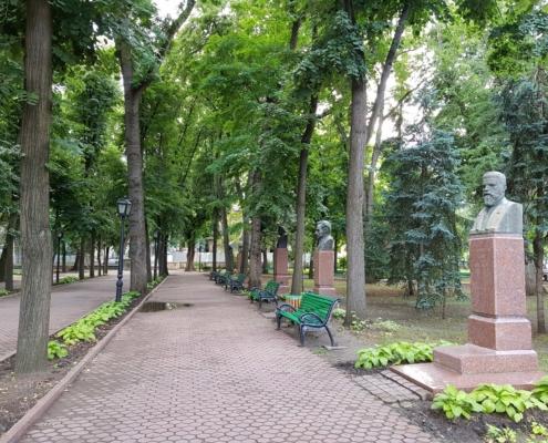 Solvis-Ponovno u sadnji-Moldavija